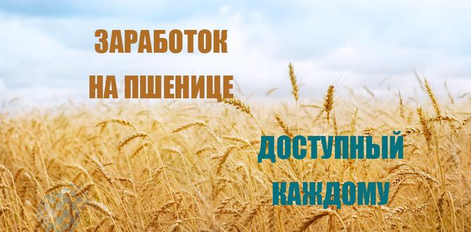 Бинарные опционы на пшенице